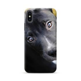 Puppy iPhone XS Max Case